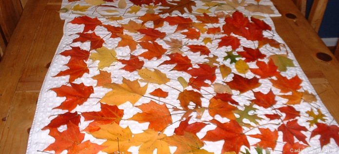 drying leaves