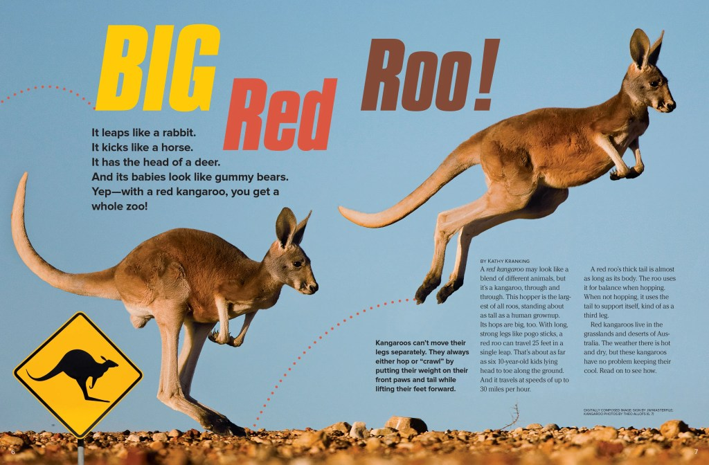 red_kangaroo_page1