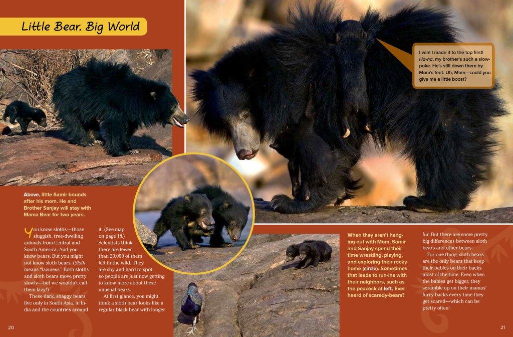 slothbears-oct2012-page2
