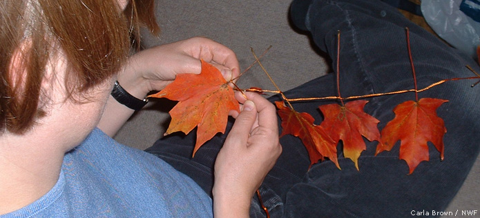 tying leaves