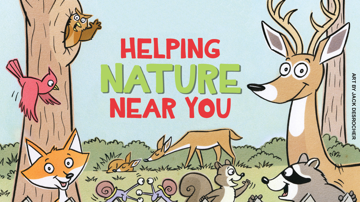 Helping Nature Near You