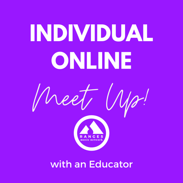 Individual Online Meet Up with an Educator