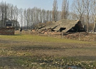 Collapsed remnant of one of four crematoria at Birkenau.
