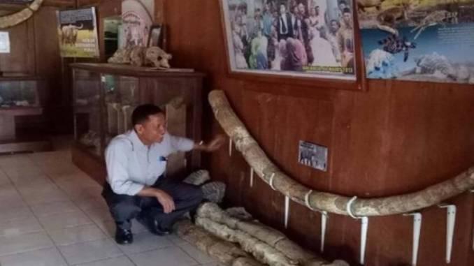 Museum Banjarejo