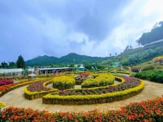 Wisata Purbalingga Taman Bunga Kutabawa
