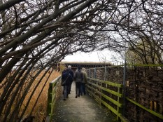 Participants explore the ecology park