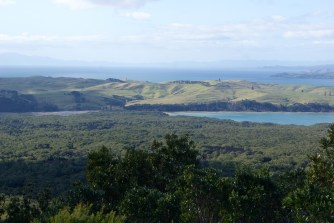 Islington Bay from Rangitoto summit