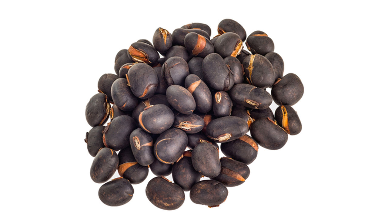 Benefits of Alkushi seeds