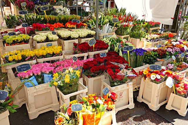 the Perfect Florist in the Heart of Penrith