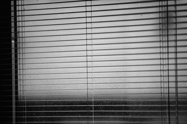 Perfect Blinds for Your Windows
