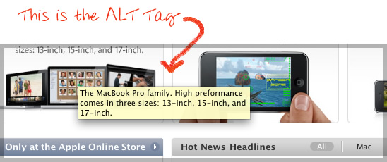 Image Alt tags Simplified by RankFrog