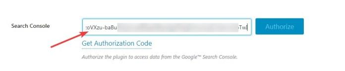 Paste-the-authorization-code
