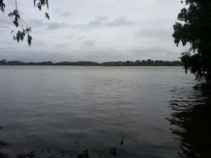 bank of river kaveri