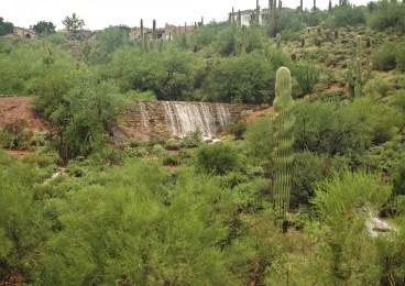 Fountain Hills Arizona: Desert Botanical Gardens