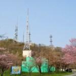 桜めぐり 2008 (測量山)