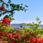 本輪西神社から見た景色