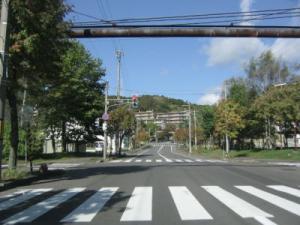 nakaima3.jpg
