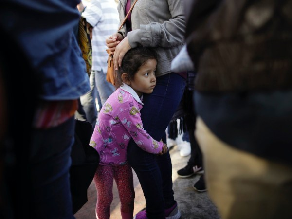 Pests, Invaders and Infestations: The Radical Right's Dehumanization Of Immigrants