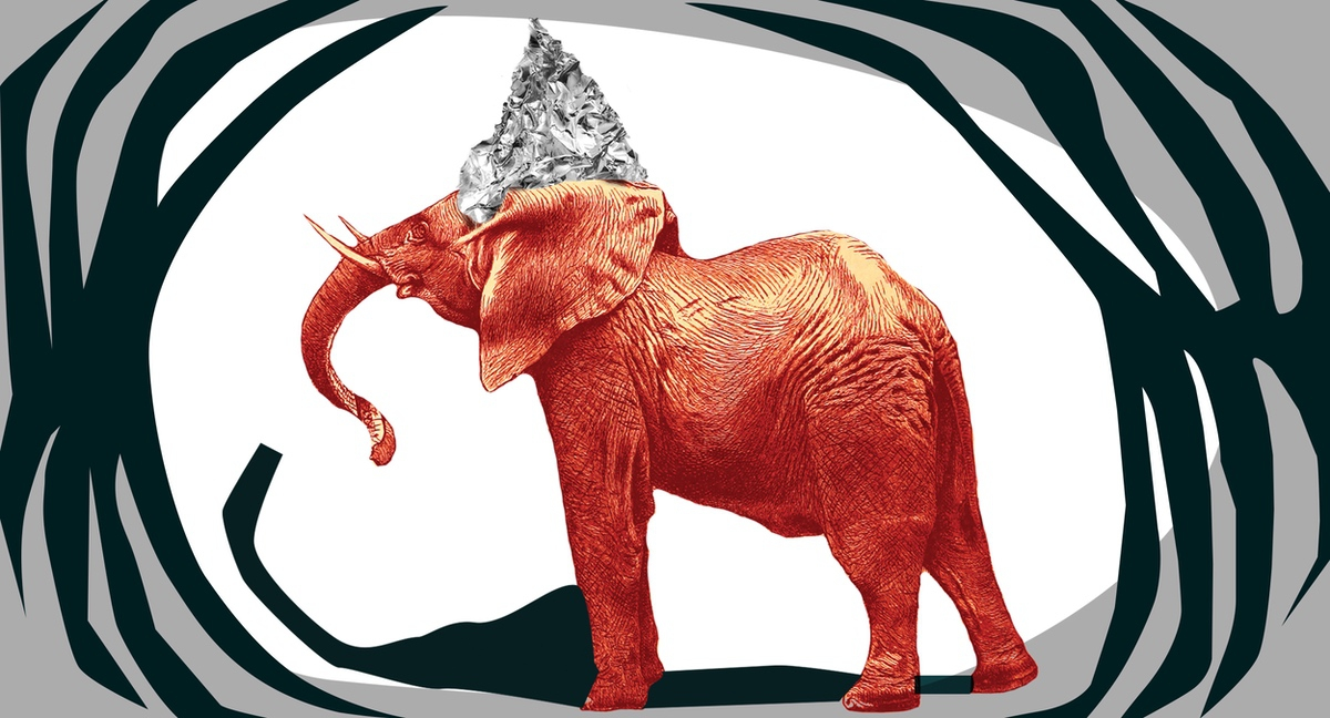 elephant in tinfoil hat