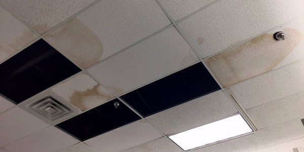 One of many pictures shown by Business Insider of Sears in shambles