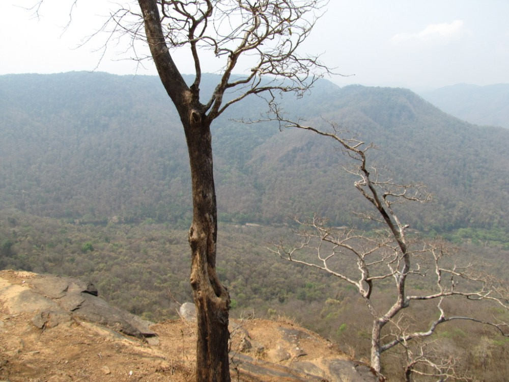 Trek from Jenukallu Gudda to Shivaganga falls (1/6)