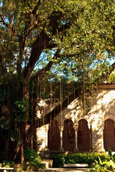 In the garden, with a view of the Spanish Monastery, Miami, USA.