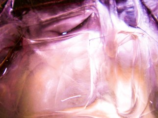 Purple ice