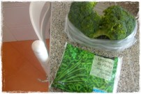 Brocolos + Feijao verde