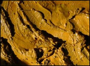 Ocre-jaune-mini-raphaele-heliot