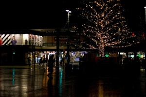 Baum am Bahnhof Bern