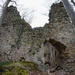Ganze Vorderseite der Burgruine der Jagdburg Höfen