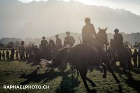 Reiter Militäranlass Thun meets Army and Airforce