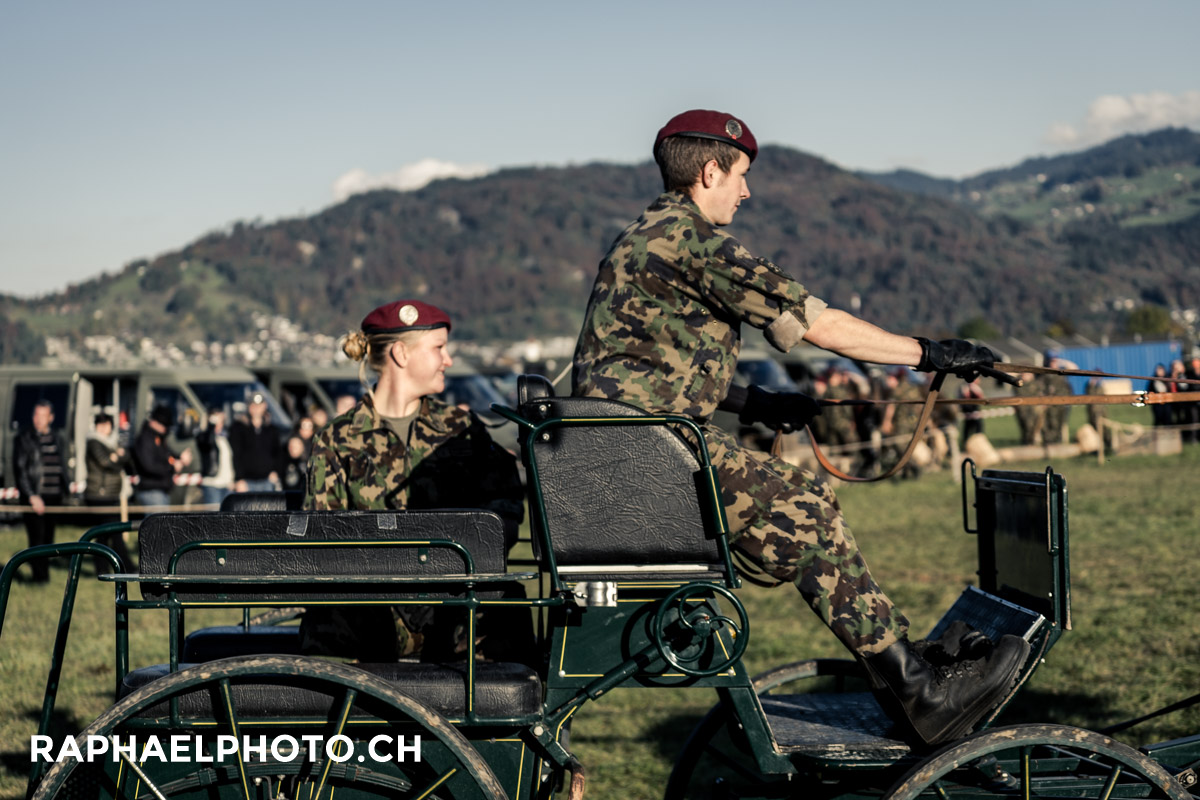Pferdewagen am Thun meets Army and Airforce