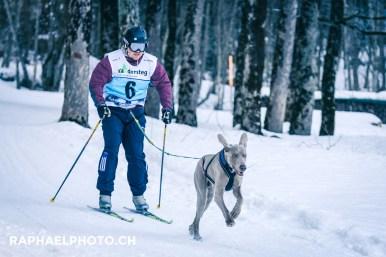 Skijöring NR. 6