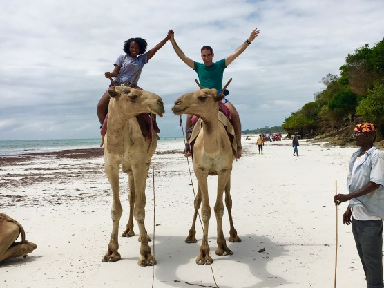Camels on a beach on the Indian Ocean!