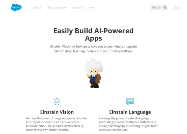 Salesforce Einstein Vision API