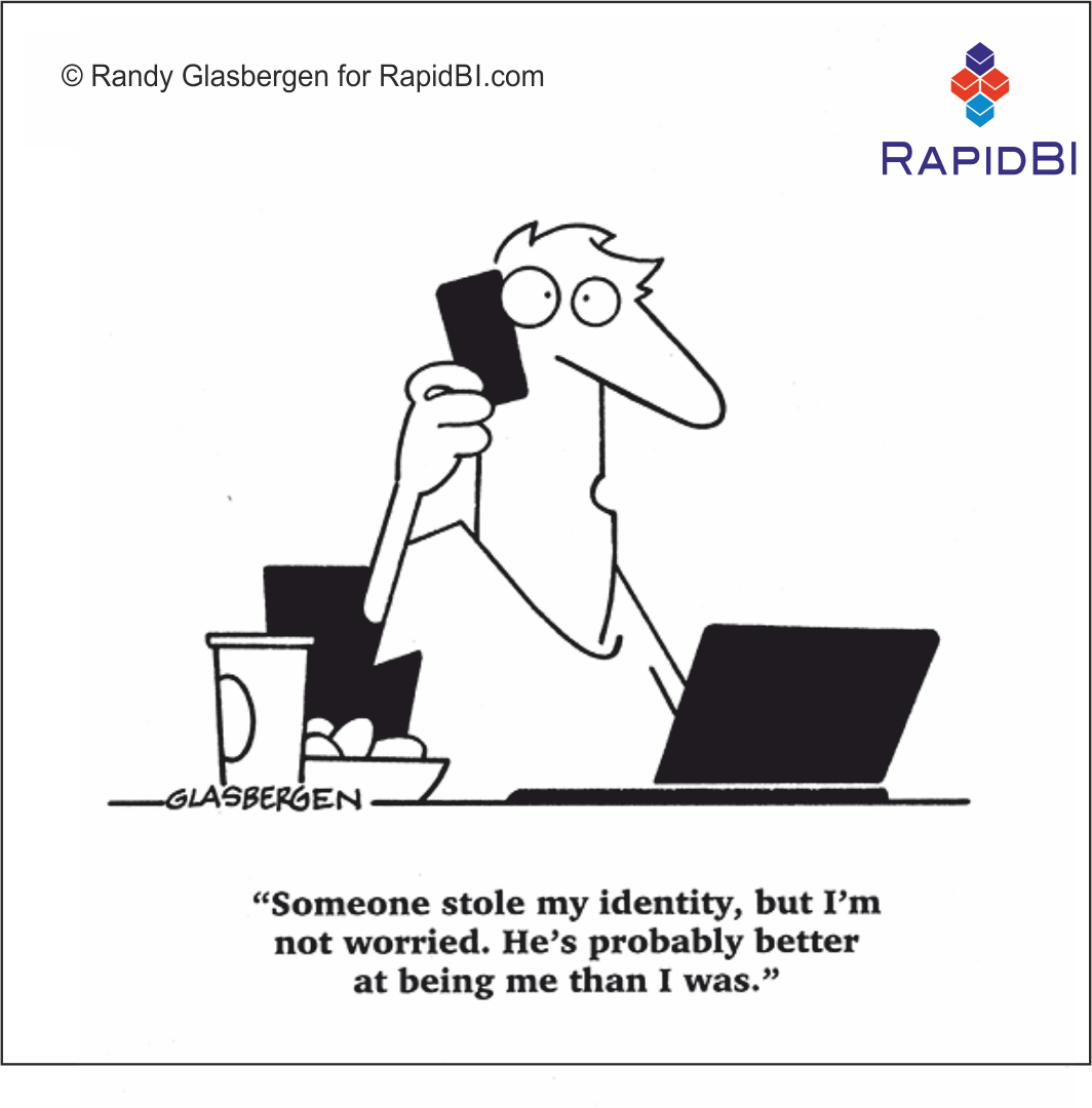 RapidBI Daily Cartoon #17 A look at the lighter side of