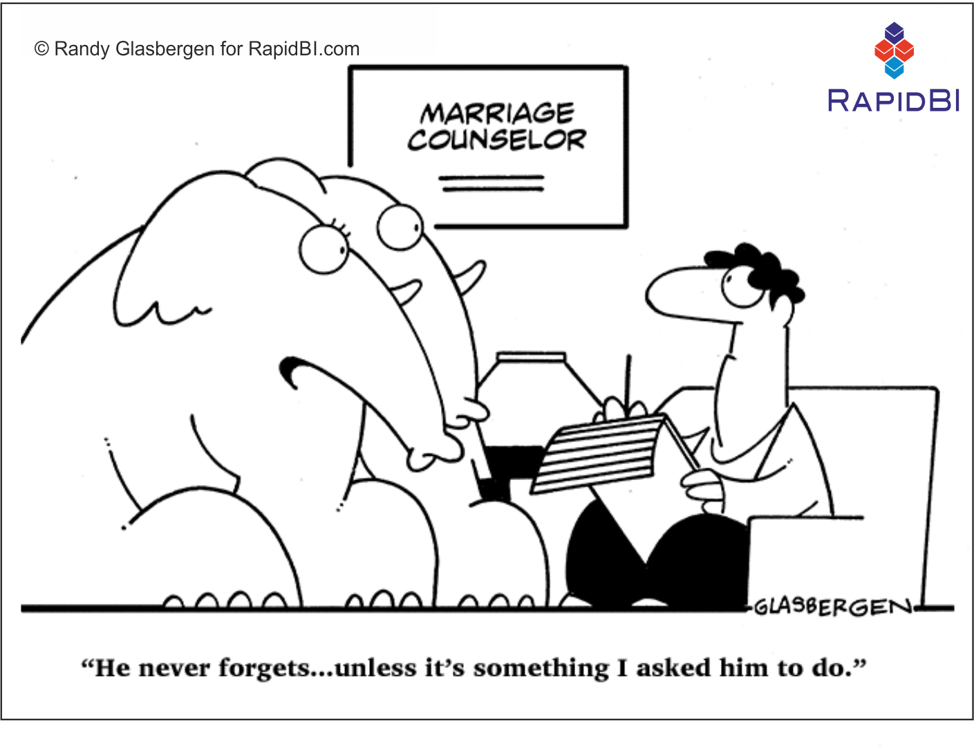 RapidBI Daily Cartoon #6 A look at the lighter side of