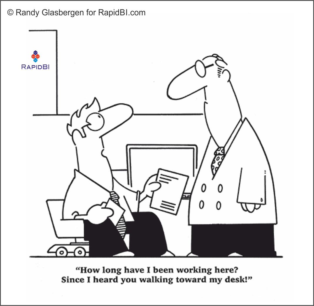 RapidBI Daily Cartoon #64 A look at the lighter side of