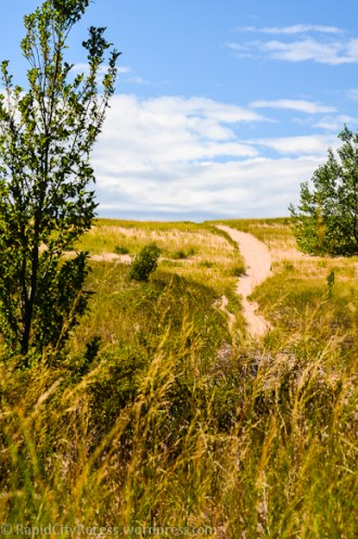 Part of a dune trail...that we did not follow