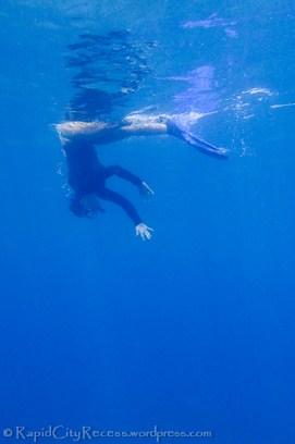 me diving down