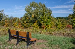 bench with hillside view