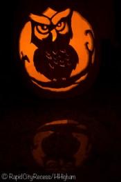 owloween pumpkin-2