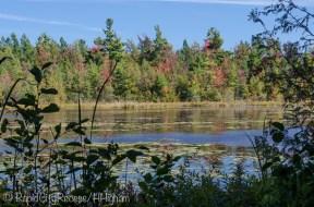 Pyatt Lake-2