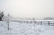 snow snow snow