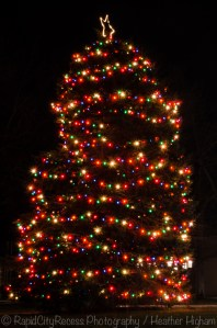 Petoskey Christmas tree