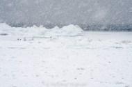 Glen Haven snowstorm