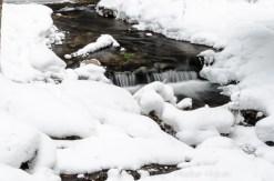 Rapid River intimates-8