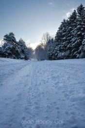 fresh snow-6