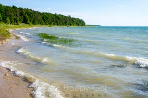 Wilcox-Palmer-Shah Preserve beach